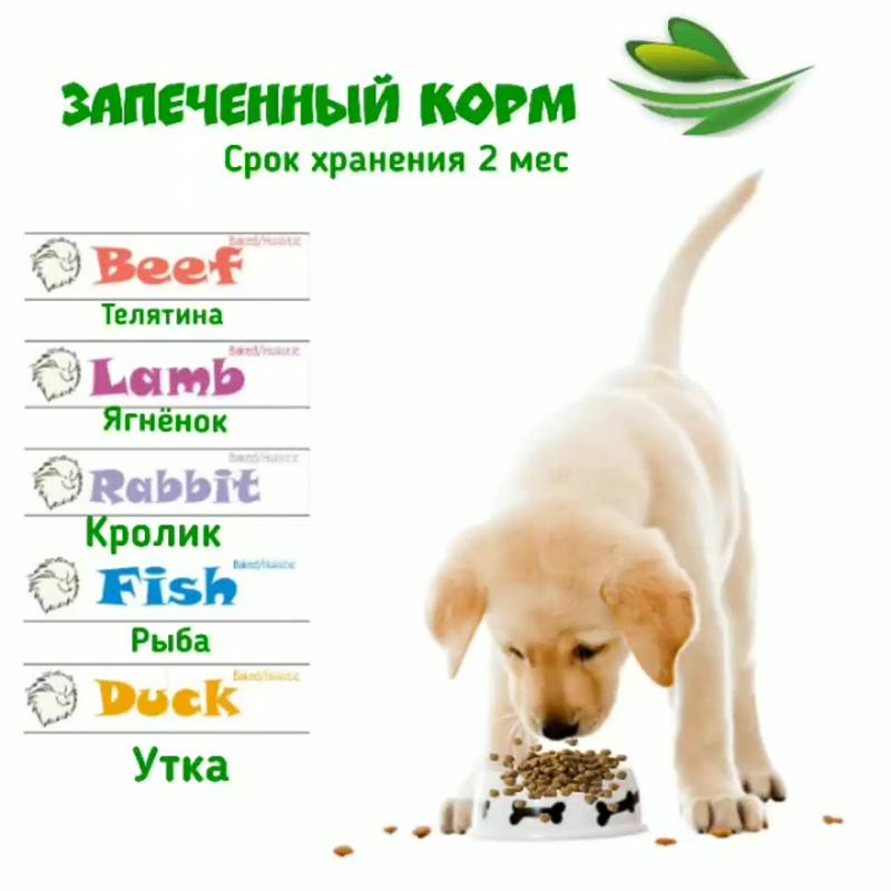 video20201108_004525.mp4