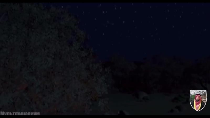 Шрековские хабары Шапишкины (720p).mp4