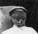Личный фотоальбом Анастасии Седых