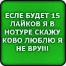 Фотоальбом Егора Шередеко