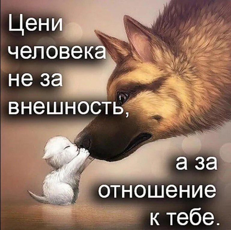 фото из альбома Ажайки Манаповой №1