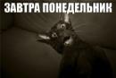 Фотоальбом Владимира Короля