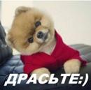 Персональный фотоальбом Людмилки Гурской