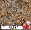 Персональный фотоальбом Максима Писклова