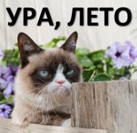 Анна Баранова фото №25