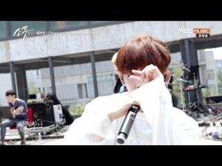 170608 | Seventeen - MBC Music Picnic Live  Эпизод 108