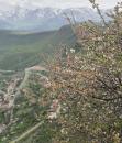 Сати Атанесян фотография #27