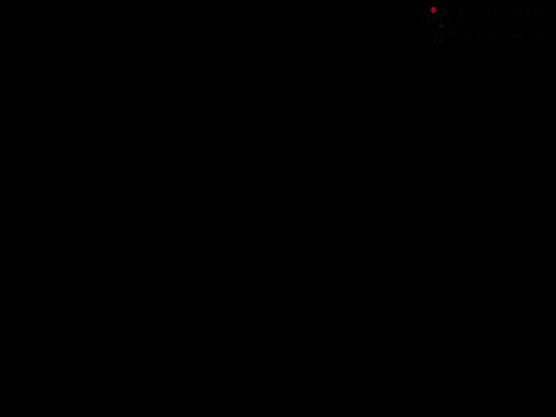 Физкультура для собаки: дворовые тренажеры. Шигаев Роман и ризеншнауцер Куба. Тольятти, 20 июня 2019.