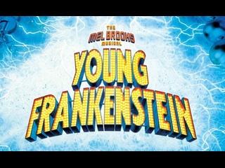 Young Frankeinstein 2007 Broadway
