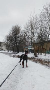 Анна Захматова фото №42