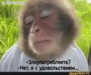 Личный фотоальбом Самуила Котовского
