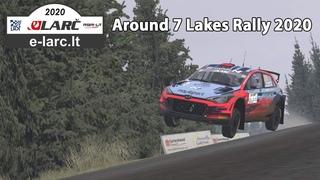 Rally driver in Virtual Rally Championship (E-Larc)