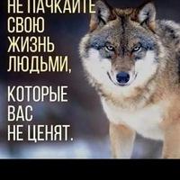 Жибек Алмазбек