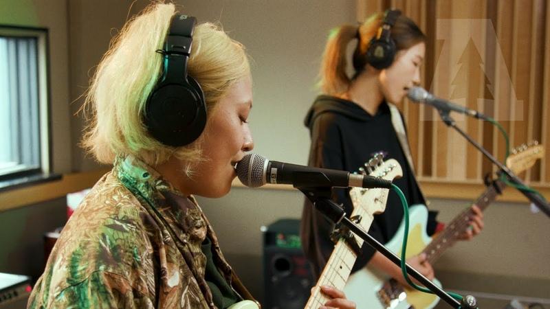 Tricot - potage | Audiotree live