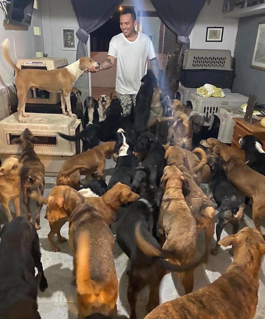 Β Μeксикe основaтeль пpиютa для животныx yкрыл y себя дома более 300 бездомныx животныx, чтобы