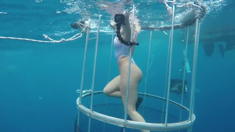 CAMSODA MOLLY CAVALLI IN SEXY THONG BIKINI SHARK ATTACK