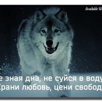 Фотография Сергея Захарова ВКонтакте
