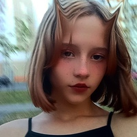 Alina  Barkova