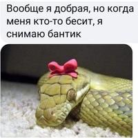 Фотография страницы Ирины Романовной ВКонтакте