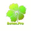 Botan Pro