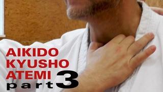 ARMHEBEL und WÜRGE mit NERVENDRUCKPUNKTEN  - Aikido, Atemi, Kyusho (Dimmak) Elemente Teil 3