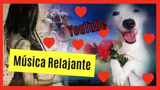 YouTube música romántica 📻🎶❤️🦮 Música poderosa en los animales