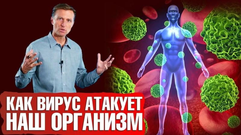 ВИРУСЫ АТАКУЮТ 👽 Как вирусы поражают нашу иммунную систему