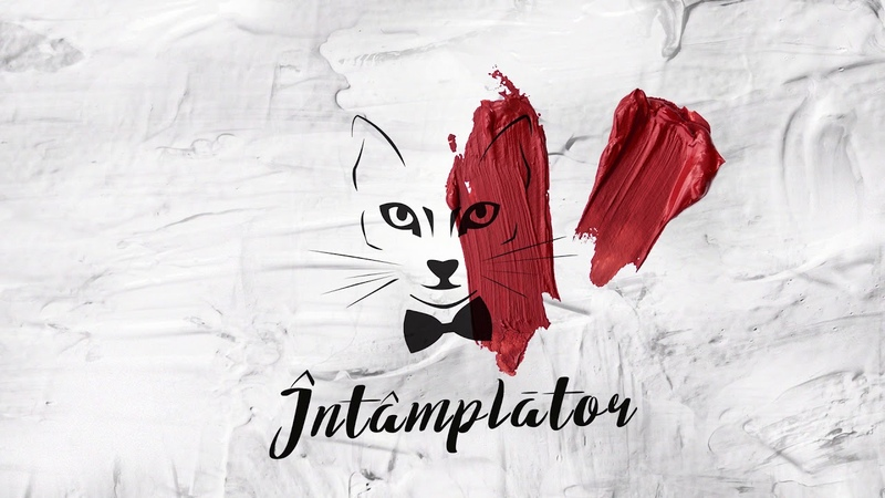 The Motans Intamplator Official Audio